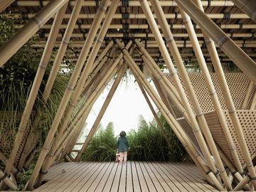 Проект бамбукового города в Китае